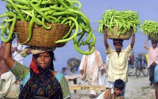 Το ρητό «μία εικόνα, 1.000 λέξεις» δεν ισχύει για την Ινδία, γιατί σ' αυτή τη χώρα, μία εικόνα υποδηλώνει χίλιες λέξεις και κρύβει άλλεςτόσες μυρωδιές.