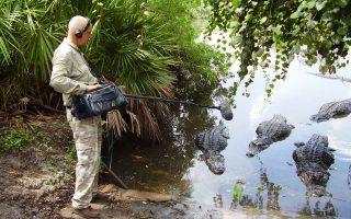 Καταγράφοντας ήχους που βγάζουν οι κροκόδειλοι μέσα στο νερό. Ο Κρις Γουότσον έχει αποπειραθεί να καταγράψει φυσικούς ήχους συχνά με κίνδυνο της ζωής του, όπως εξομολογείται στην «Κ».