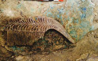 Μια χτένα από ελεφαντόδοτο από τα πλούσια κτερίσματα του τάφου.