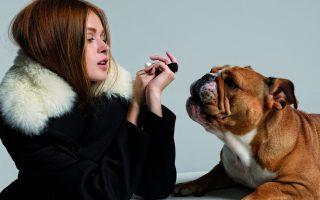 fashion-dog-day-afternoon0