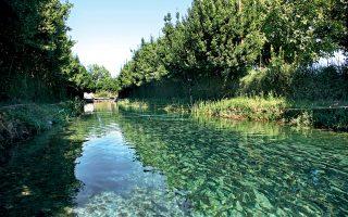 Στα νερά του Μέλανα ποταμού μεγαλώνουν οι πέστροφες. (Φωτογραφίες: ΑΚΗΣ ΟΡΦΑΝΙΔΗΣ)