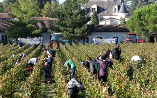 Το μέλλον του κρασιού διαγράφεται ευοίωνο, εφόσον περισσότεροι άνθρωποι από ποτέ το καταναλώνουν και αυτό παρατηρείται ειδικά στη Βρετανία και τις ΗΠΑ.