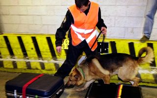 **ADVANCE FOR TUESDAY, NOV. 8** FILE** A security agent and his sniffer dog check luggage during the visit of French Interior Minister Nicolas Sarkoy, at Roissy Charles de Gaulle airport, outside Paris, in this March 8, 2003 file photo. From Stockholm to Rome, Paris to Istanbul, European governments are rushing to toughen anti-terror laws since the London subway attacks _ in some cases using the deadly July 7 blasts to justify controversial measures that would give law enforcement far greater powers to battle extremists. (AP Photo/Francois Mori)