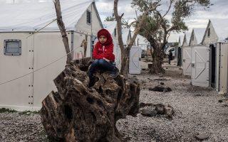 Ενα παιδί από τη Συρία, σκαρφαλωμένο σε δέντρο στον προσφυγικό καταυλισμό του Καρά Τεπέ, περιμένει να περάσουν οι ώρες για να συνεχίσει το ταξίδι του. ΜΚΟ και εθελοντικές οργανώσεις συνεργάζονται και προσπαθούν να συντονιστούν στη Λέσβο για να βοηθήσουν τους χιλιάδες πρόσφυγες που φτάνουν στο νησί.