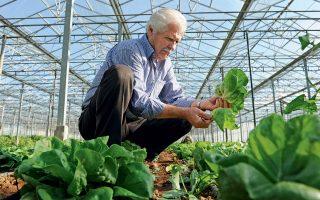 Ο Χριστόφορος Διαμάντης, βιοκαλλιεργητής που πιστοποιείται από τη ΔΗΩ με αριθμό μητρώου Νο.1. (Φωτογραφίες: ΑΚΗΣ ΟΡΦΑΝΙΔΗΣ)