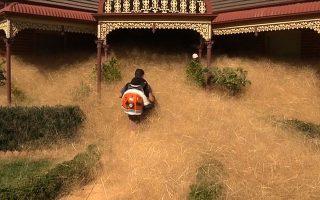 Να καθαρίσει την αυλή του από το ενοχλητικό ζιζάνιο προσπαθεί κάτοικος της Ουανγκαράτα.