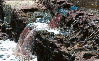 Στο Επιχειρηματικό Πάρκο Εξυγίανσης Οινοφύτων περιλαμβάνονται (μεταξύ άλλων) μία ή δύο μονάδες καθαρισμού βιομηχανικών αποβλήτων, δίκτυα ύδρευσης, αποχέτευσης ομβρίων και ακαθάρτων και το Παρατηρητήριο Περιβάλλοντος.