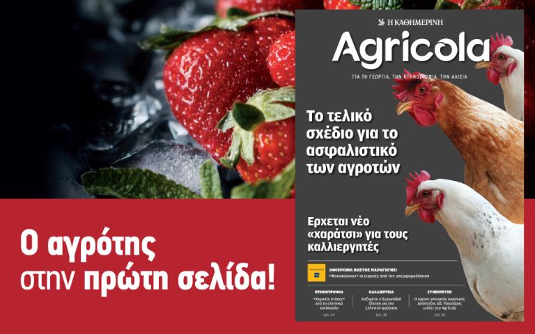agricola-2127000