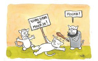 Σκίτσο της Τυνήσιας Nadia Khiari. Ενας γάτος διαδηλώνει κρατώντας πλακάτ που γράφει: «Ζήσε ελεύθερα ή πέθανε!» κι ένας άλλος τον χτυπάει με ρόπαλο, λέγοντας: «Πέθανε!». Ο γάτος Willis from Tunis πρωταγωνιστεί στο βιβλίο της «Εγχειρίδιο για τέλειους δικτάτορες».