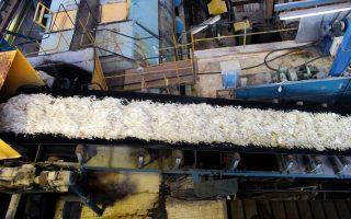 Επεξεργασία τεύτλων στο εργοστάσιο της ΕΒΖ. Με την αναδιάρθρωση, η εταιρεία μπορεί να ελπίζει σε επιστροφή στην κερδοφορία.