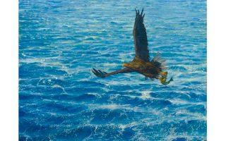Θαλασσαετός αρπάζει τη λεία του (από το καράβι), 50x35 εκ.