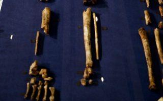 to-archaiotero-deigma-karkinoy-entopistike-se-apolithomeno-osto0