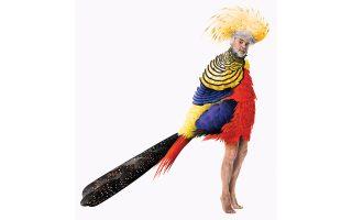 Ο Νίκος Καραθάνος ως πολύχρωμο πτηνό από τους «Ορνιθες», διά χειρός της ελληνικής ομάδας γραφιστών Beetroot.
