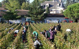 Οι Γάλλοι οινοπαραγωγοί δεν μπορούν να ανταγωνιστούν τις χαμηλές τιμές των Ισπανών συναδέλφων τους.