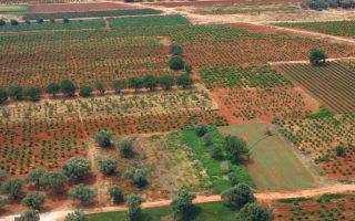 Στην ενότητα του Ε9 θα προστεθούν τρεις με τέσσερις στήλες, ενώ οι ιδιοκτήτες αγροτεμαχίων πρέπει να κάνουν και διορθώσεις στα στοιχεία που έχουν ήδη δηλώσει.