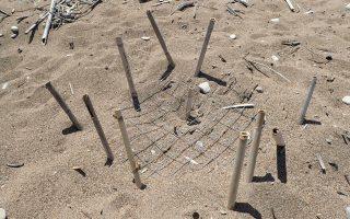 Φέτος έχουν σημειωθεί περισσότεροι από 150 βανδαλισμοί σε φωλιές.