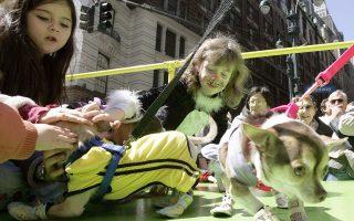 Ειδικό θεματικό πάρτι μεταμφιεσμένων του πολυκαταστήματος Macy's για κατοικίδια και παιδιά, στη Νέα Υόρκη.