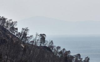 Περίπου 26.000-27.000 στρέμματα, κυρίως δασικών εκτάσεων, κάηκαν στην πρόσφατη πυρκαγιά στη βόρεια Εύβοια.