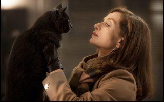 Η Ιζαμπέλ Ιπέρ υποδύεται τη Μισέλ, μια ψυχρή γυναίκα που φαίνεται πως αντιμετωπίζει υπερβολικά ψύχραιμα τον βιασμό της.