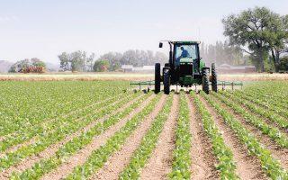 Το πρόγραμμα αφοράτην οικονομική ενίσχυση νέων που δεν έχουν υπερβεί το 41ο έτος της ηλικίας τους για την είσοδο και την παραμονή τους στη γεωργική απασχόληση, καθώς και για την πρώτη τους εγκατάσταση σε γεωργικές εκμεταλλεύσεις.