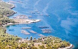 Η δραστηριότητα των ιχθυοκαλλιεργειών στην Ελλάδα αυτή τη στιγμή ορίζεται από το Ειδικό Χωροταξικό για τις υδατοκαλλιέργειες.