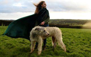 Χαιρετισμός στη φύση. Η Rebecca Smith με την ανάλογη περιβολή και συνοδεία του εντυπωσιακού σκύλου της, ένα Irish Wolfhound που ακούει στο όνομα Amazing Grace ποζάρουν κοντά στο μνημείο της λίθινης εποχής Newgange. Εκείνη και δεκάδες άλλοι συγκεντρώθηκαν στην κοιλάδα Boyne της Ιρλανδίας για να εορτάσουν το χειμερινό ηλιοστάσιο. REUTERS/Clodagh Kilcoyne