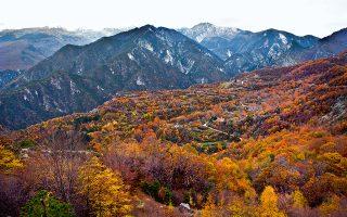 Ατέλειωτα δασωμένα βουνά ορίζουν τα σύνορα με τη FYROM. (Φωτογραφία: ΚΛΑΙΡΗ ΜΟΥΣΤΑΦΕΛΛΟΥ)