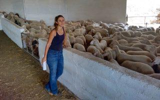Η αγαπημένη εποχή της Μαριάννας είναι όταν οι προβατίνες γεννούν και η φάρμα γεμίζει με τα μικρά τους.