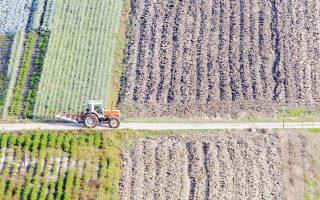 Με ένορκες δηλώσεις θα μπορούν οι αγρότες να διεκδικήσουν τις εκχερσωμένες δασικές εκτάσεις.