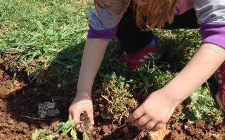 Το EcoΚτήμα βρίσκεται σε μια έκταση 5,5 στρεμμάτων στα Δερβενοχώρια και είναι ανοιχτό σε σχολεία, αλλά και σε κάθε είδους φορείς, για διάφορες δράσεις στους χώρους του.