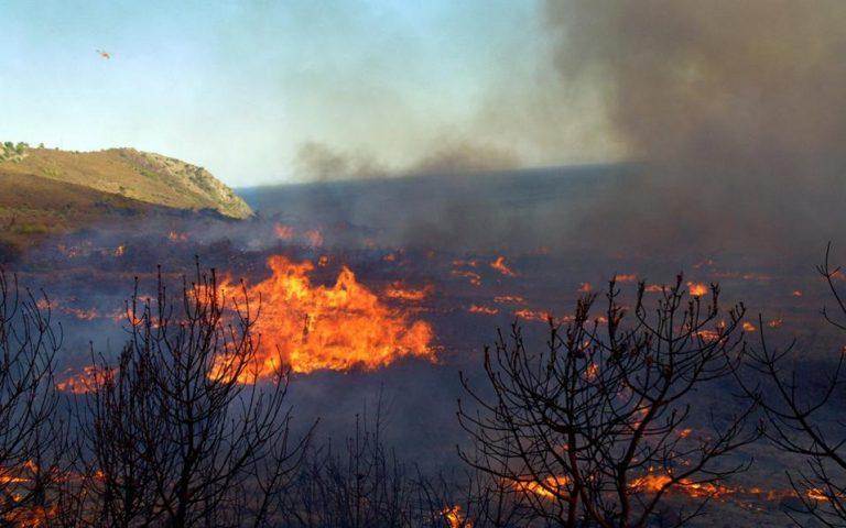 Υπό μερικό έλεγχο οι φωτιές σε Κορώνη και Κρυονέρι Αττικής