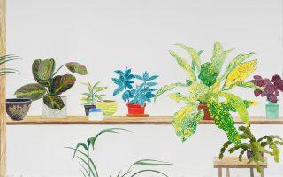 Με την υπομονή ενός προσεκτικού παρατηρητή, ο ζωγράφος καταγράφει τη μορφή των φυτών.