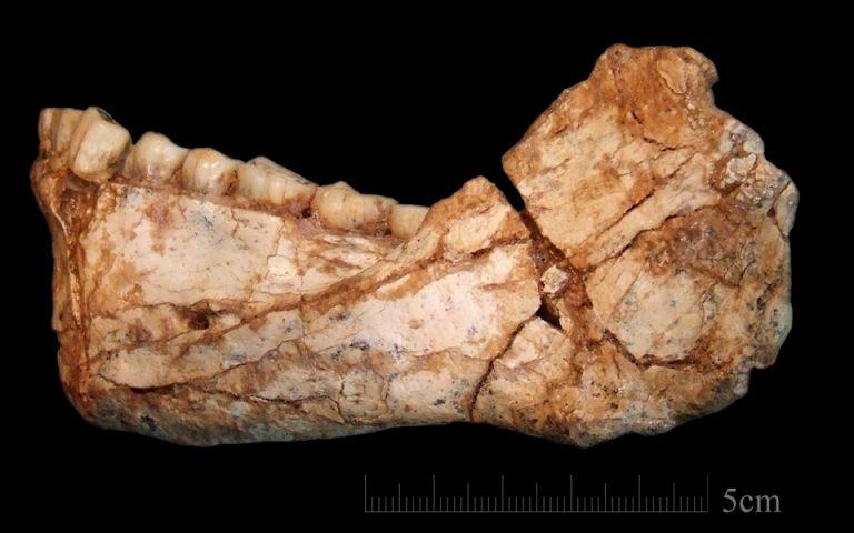 maroko-vrethikan-ta-palaiotera-apolithomata-toy-homo-sapiens-2193993