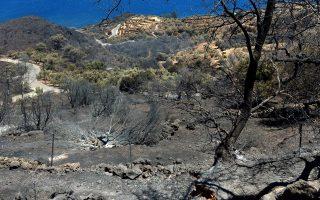 Σε ύφεση βρισκόταν χθες το βράδυ η φωτιά στον Κότρωνα και στο Σκουτάρι Λακωνίας.