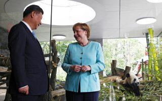 Ενα από τα δύο πάντα που δώρισε ο πρόεδρος της Κίνας Σι Τζινπίνγκ στον ζωολογικό κήπο του Βερολίνου συνηθίζει στη νέα του κατοικία, ενώ η καγκελάριος Μέρκελ συζητά με τον υψηλό καλεσμένο της. Στις διαβουλεύσεις που είχαν ενόψει της συνόδου του G20, η οποία ξεκινά αύριο στο Αμβούργο, οι δύο ηγέτες συμφώνησαν να εντείνουν τη συνεργασία τους. Σε άλλες δηλώσεις, η κ. Μέρκελ επανήλθε στις εκκλήσεις της για μεγαλύτερη ευρωπαϊκή ενότητα, επιμένοντας ότι, στην εποχή Τραμπ, η αμερικανική υποστήριξη δεν μπορεί να θεωρείται δεδομένη.