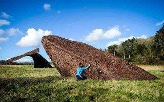 Καλλιτεχνική εγκατάσταση που παρουσιάζει φάλαινα σε φυσικό μέγεθος, φτιαγμένη από πλεγμένα κλαδιά ιτιάς, στο Κέντρο Φυσικής Ιστορίας κοντά στο Μπρίστολ της Αγγλίας το 2016.