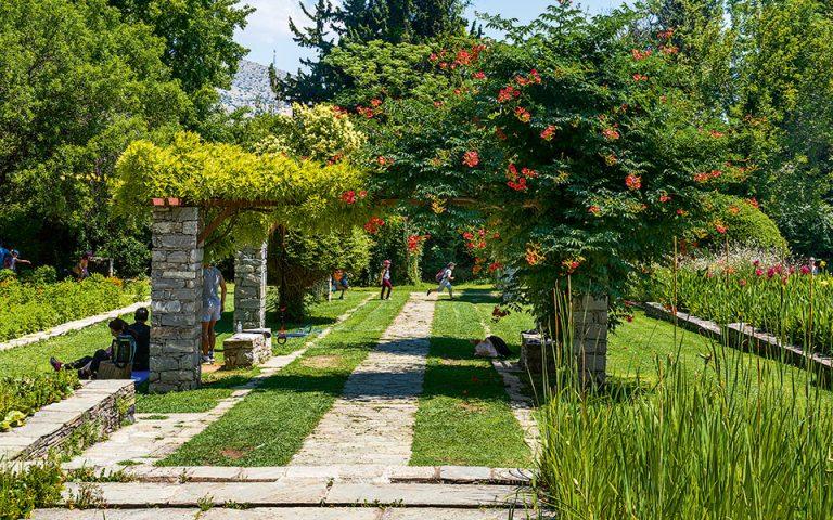 Βοτανικός Κήπος Διομήδους. (Φωτογραφία: © ΠΕΡΙΚΛΗΣ ΜΕΡΑΚΟΣ)
