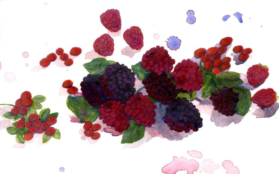 nor_berries.jpg