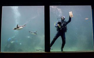 Φωτογραφία: Ben Birchall/PA via AP