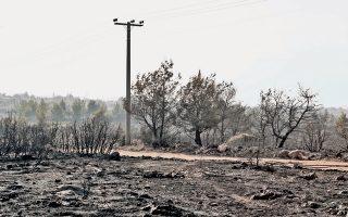 Τέσσερις ημέρες έκαιγαν οι διάσπαρτες εστίες φωτιάς στην Ανατολική Αττική, αποτεφρώνοντας τεράστιες εκτάσεις βλάστησης, ακόμη και σπίτια. Η φωτιά τιθασεύθηκε, όμως μύρια προβλήματα έπονται και τίποτα δεν εγγυάται ότι ο όλεθρος δεν θα επαναληφθεί.