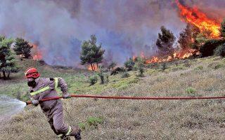 Μάχη με τις φλόγες κοντά στο Μετόχι.