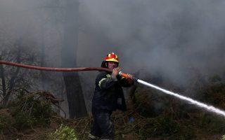 Πυροσβέστες παλεύουν με τις φλόγες στο Καπανδρίτι Αττικής, Τρίτη 15 Αυγούστου 2017. ΑΠΕ-ΜΠΕ/ ΑΠΕ-ΜΠΕ/ ΟΡΕΣΤΗΣ ΠΑΝΑΓΙΩΤΟΥ