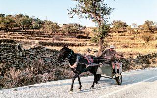 Επιστρέφοντας από τη δουλειά, κοντά στο χωριό Ελληνικά. (Φωτογραφία: MΑΡΙΚΑ ΤΣΟΥΔΕΡΟΥ)