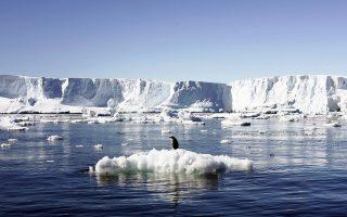 Η άνοδος της θερμοκρασίας στην Ανταρκτική αναμένεται να επηρεάσει τα οικοσυστήματα της περιοχής και τα είδη που ζουν εκεί.