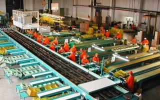 Στην έρευνα της ManpowerGroup καταγράφονται σημαντικές προοπτικές αύξησης των θέσεων εργασίας στον τομέα της γεωργίας.