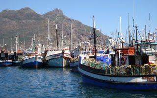 Στην αλιεία στη Μεσόγειο απασχολούνται περισσότεροι από 180.000 εργαζόμενοι.