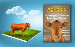 agricola-2208540