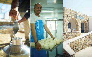 Μυκονιάτικο το γάλα που χρησιμοποιούν στο τυροκομείο. | Ο Γιώργος Συριανός, 3ης γενιάς τυροκόμος. | Το τυροκομείο με τη μυκονιάτικη αρχιτεκτονική. (Φωτογραφία: Έβελυν Φωσκόλου)