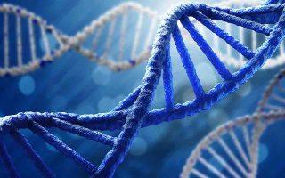 kina-epistimones-therapeysan-genetikes-pathiseis-se-emvrya0