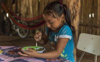 Σύμφωνα με την έρευνα του WFP, τα σχολικά γεύματα συνδέονται με την καλύτερη εκπαιδευτική πορεία των μαθητών.